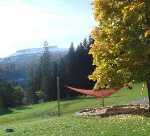 Aussicht Hotel Bellevue