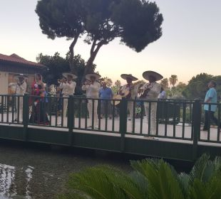 Meksykańska fala Bellis Deluxe Hotel