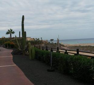 Block 9 mit Blick zum Meer Hotel Barcelo Jandia Playa