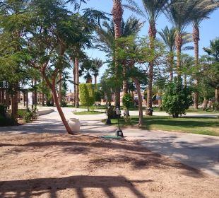 Aussicht vom Zimmer Hotel Iberotel Makadi Beach