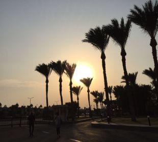 Unterwegs Dana Beach Resort