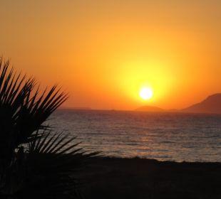 So sehen tägliche Sonnenuntergänge aus! Hotel Horizon Beach Resort