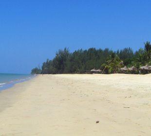 Der Hotelstrand, am Rand sind die Liegen zu sehen. C&N Kho Khao Beach Resort