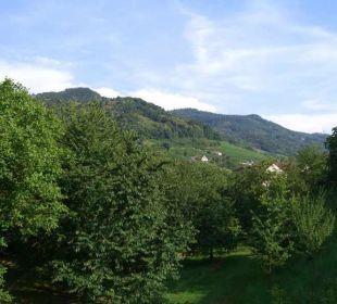Blick aus den Gästezimmern Faxe Schwarzwälder Hof Waldulm