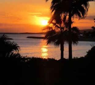 Sonnenuntergang Hotel Nissi Beach Resort
