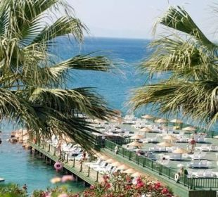 Sunbathing platform Hotel Palm Wings Beach Resort