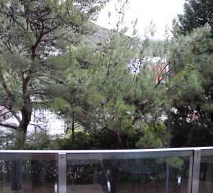 Blick aus dem Zimmer 339 Hotel Queen of Montenegro
