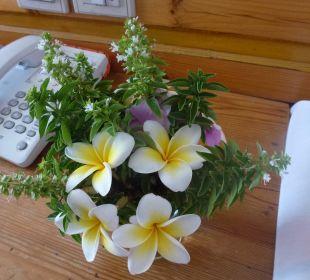 Blumen vom freundlichem Roomcleaner Hotel Utopia Beach Club