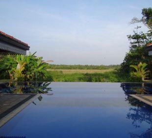 Pool mit Sicht auf Reisfeld Amal Villa