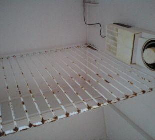 Kühlschrank  -  innen Hotel Zamek Karnity