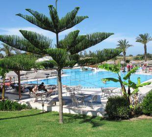 Poolanlage mit grüner Wiese Hotel Horizon Beach Resort