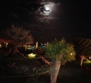 TCF bei Nacht Three Corners Fayrouz Plaza Beach Resort