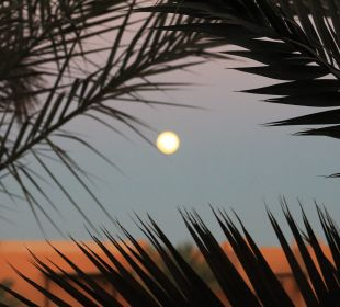 Mond Stella Di Mare Beach Resort & Spa Makadi Bay