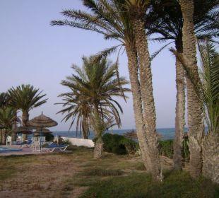 Na zewnątrz Hotel Sidi Slim