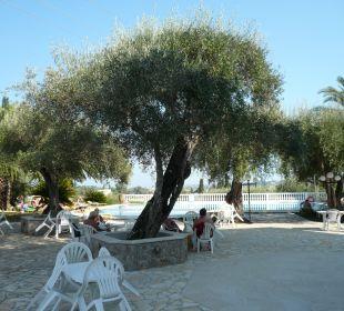 Blick auf Pool Hotel Paradise Corfu