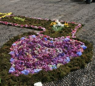 Blumenfest  Vila Mia