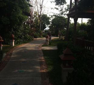Gartenanlage Samui Buri Beach Resort & Spa