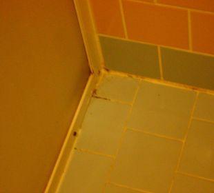Dusche Zimmer 146 Blue Lagoon Hotel Oludeniz