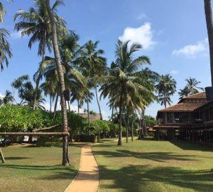 Weg zum Restaurant Hotel Ranweli Holiday Village