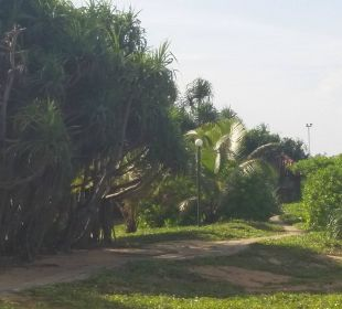 Weg am Strand Hotel Ranweli Holiday Village