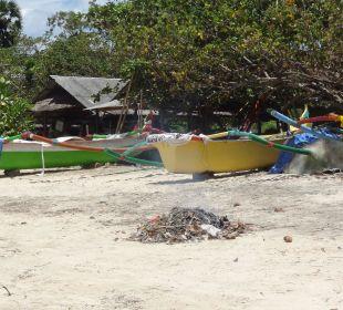 Müllverbrennung am Strand The Ahimsa Beach