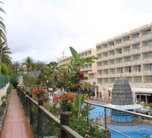 Pollanlage  IFA Catarina Hotel