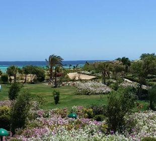 So schön Three Corners Fayrouz Plaza Beach Resort