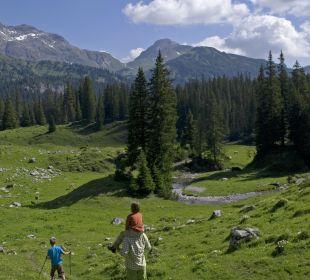 Wanderwege! Hotel Goldener Berg