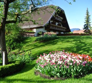 Plus de 3000 tulipes ornent les jardins Alpenresort Schwarz