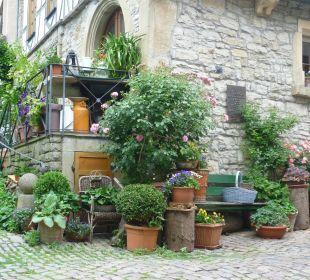 Topfpflanzen bei einem Haus Achat Premium Hotel Neustadt/Weinstraße