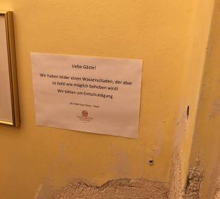 Wasserschaden: Feucht Hotel zum Dom