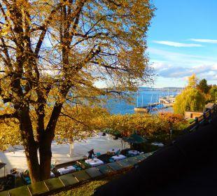 Blick auf Garten und See Romantik Seehotel Sonne