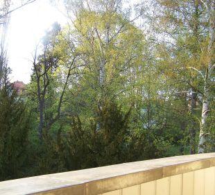 Aussicht vom Gemeinschaftsbalkon Wellnesshotel Jagdhaus