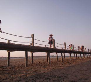 Wollen Sie täglich schnorcheln? Stella Di Mare Beach Resort & Spa Makadi Bay