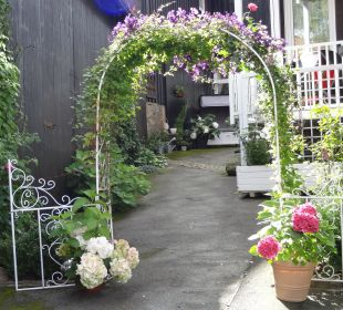 Es grünt so grün wenn Reginas Blüten blühen Bergidylle Harz - Suites