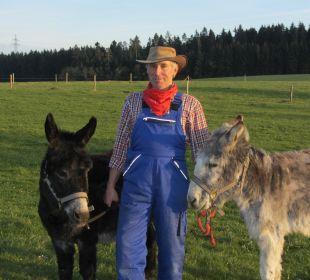 Unsere Esel Ferienbauernhof Oberjosenhof