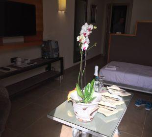 Suite Adrián Hoteles Jardines de Nivaria