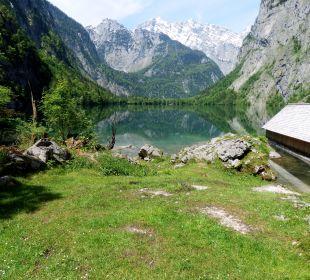 Fischunkelalm Alm- & Wellnesshotel Alpenhof