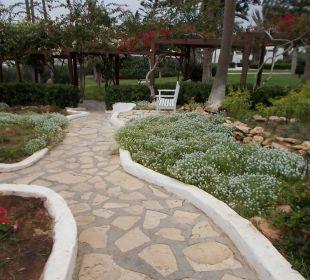 Traumhaft schön Hotel Nissi Beach Resort