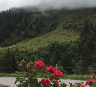 Ausblick vom Balkon Sportiv-Hotel Mittagskogel
