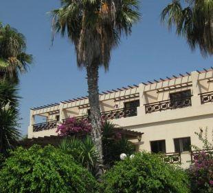 Palmen vor den Bungalows Hotel Mimosa Beach