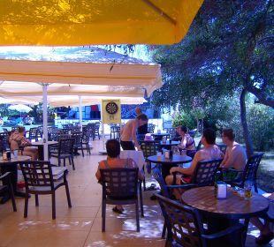Dart Hotel Oleander