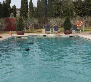 Idylle am Pool Agroturismo S'Hort de Son Caulelles