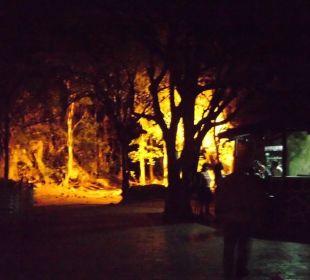 Fels-Disco Hotel Club Amigo Bucanero (existiert nicht mehr)