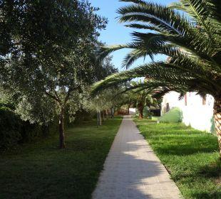 Gepflegte Gartenanlage Hotel Amari