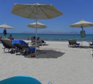 Hotelstardn Hotel Horizon Beach Resort