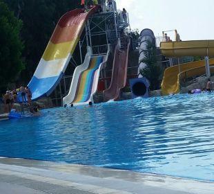 Pool Horus Paradise Luxury Resort & Club