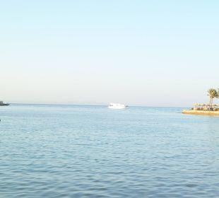 An der Marina