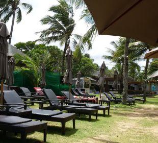 Liegestuehle La Flora Resort & Spa