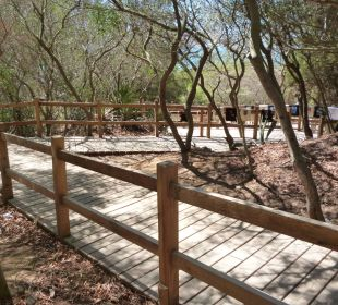 Weg zum Strand Fuerte Conil & Costa Luz Resort